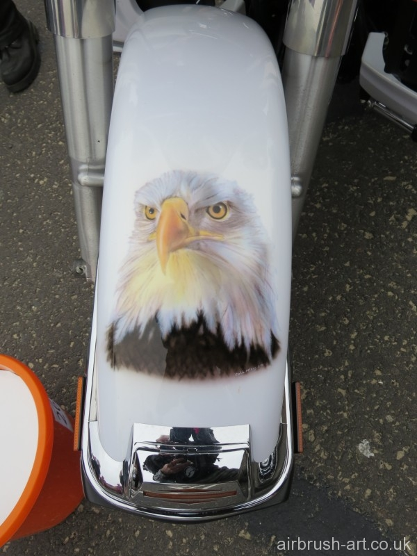 Bald Eagle on motorcycle front mudguard fender.
